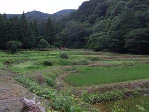 2013_06_23_yasato_5071s