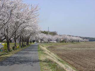 Mikazukibasi06_007